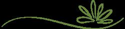 Green-Divider